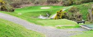 "17th Hole at Wicklow Golf Club - ""The Glen"""